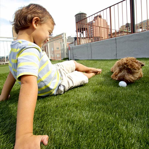 SynLawn Pet Boy and Dog on Artificial Turf